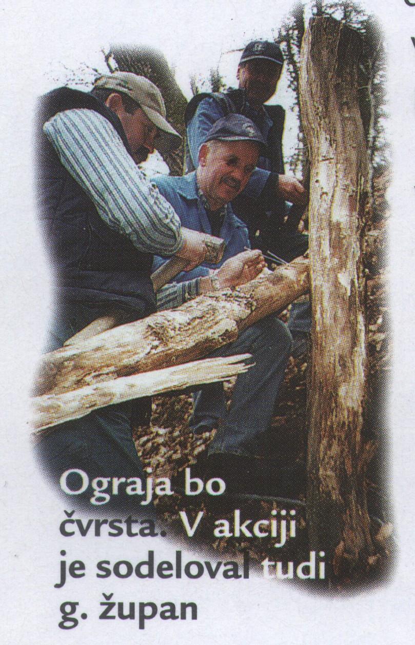 delo_v_zijalu_1995-2004