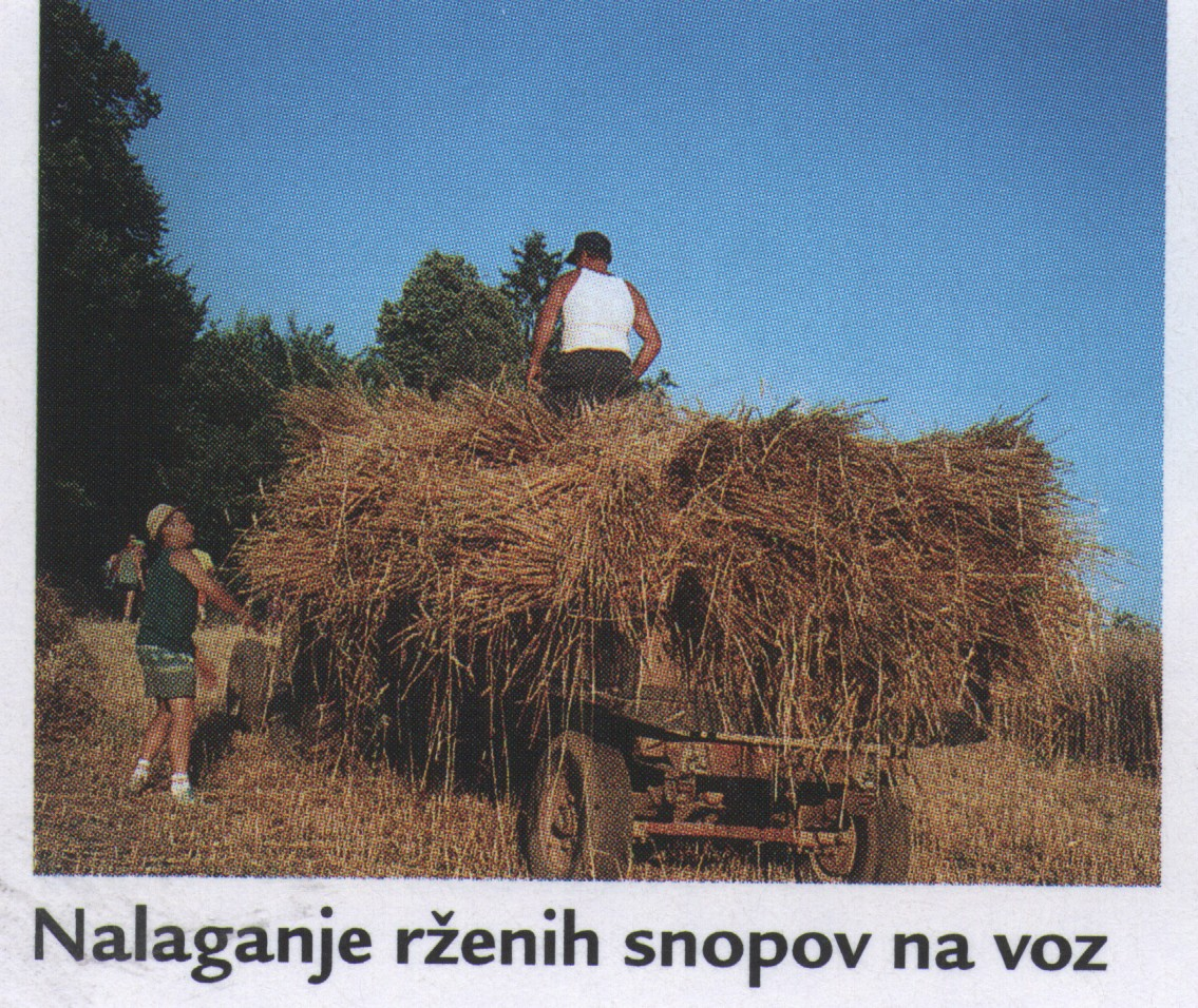nalaganje_snopov_1995-2004