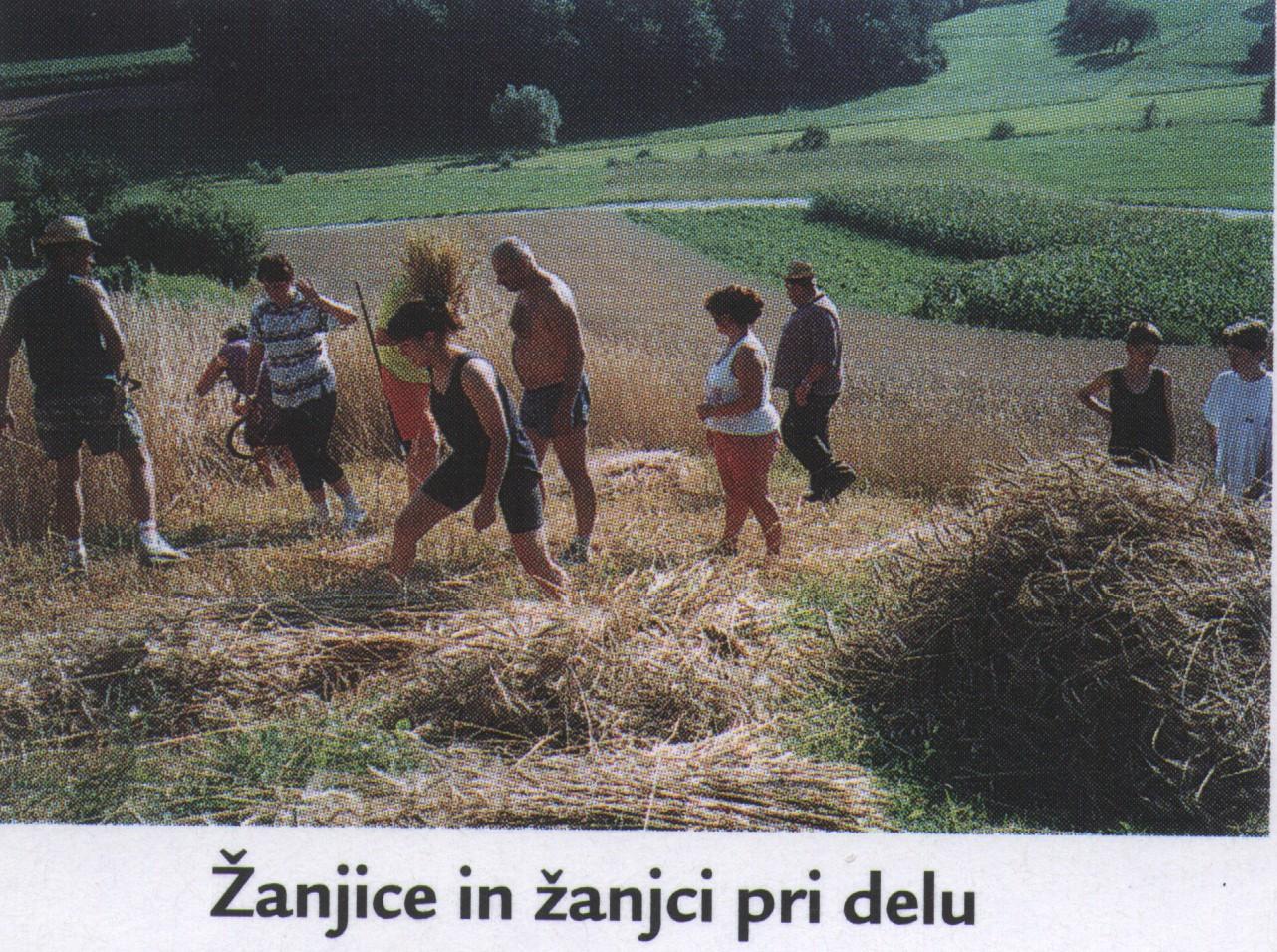 zanjice_pri_delu_1995-2004
