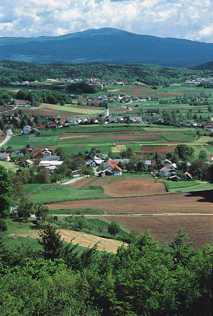 Pogled na mirnopeško dolino (foto: Marko Pršina)